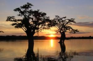 cuyabeno-lagoon-tours