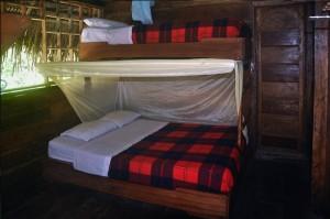 rooms-cuyabeno-lodge