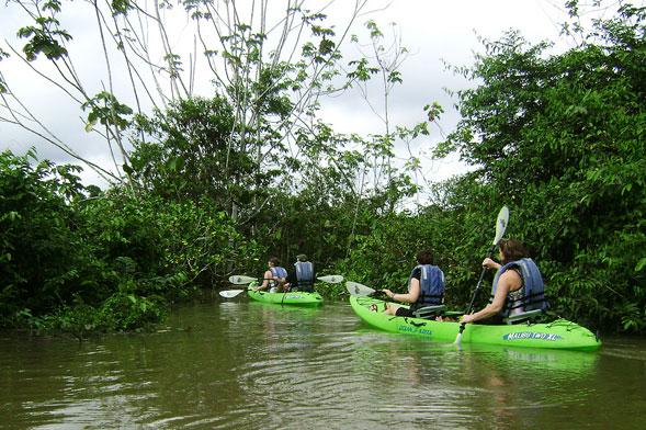 Kayak Amazon