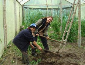 organic garden work yunguilla