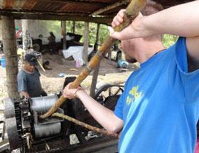 Volunteer Community work